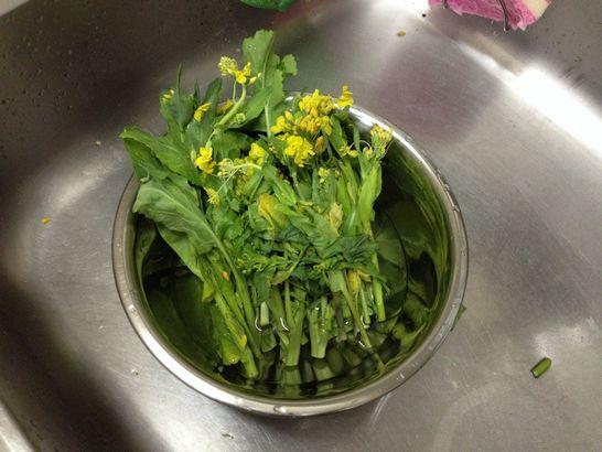 菜の花(水洗い)