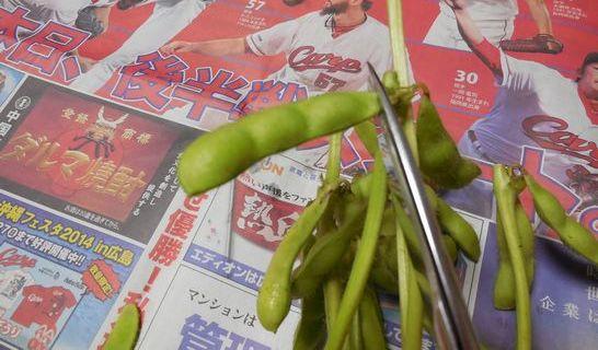 枝豆(さや)