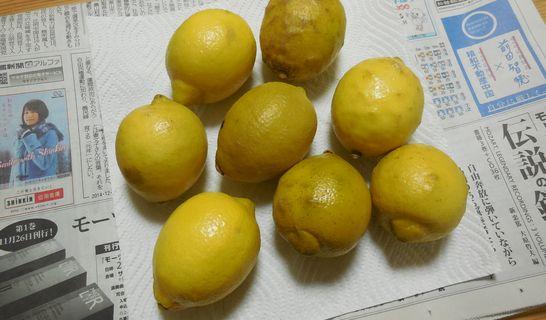 レモン(ふき取り)