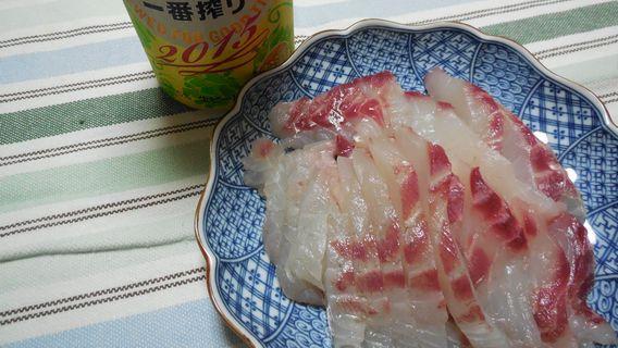 チヌ(刺身)